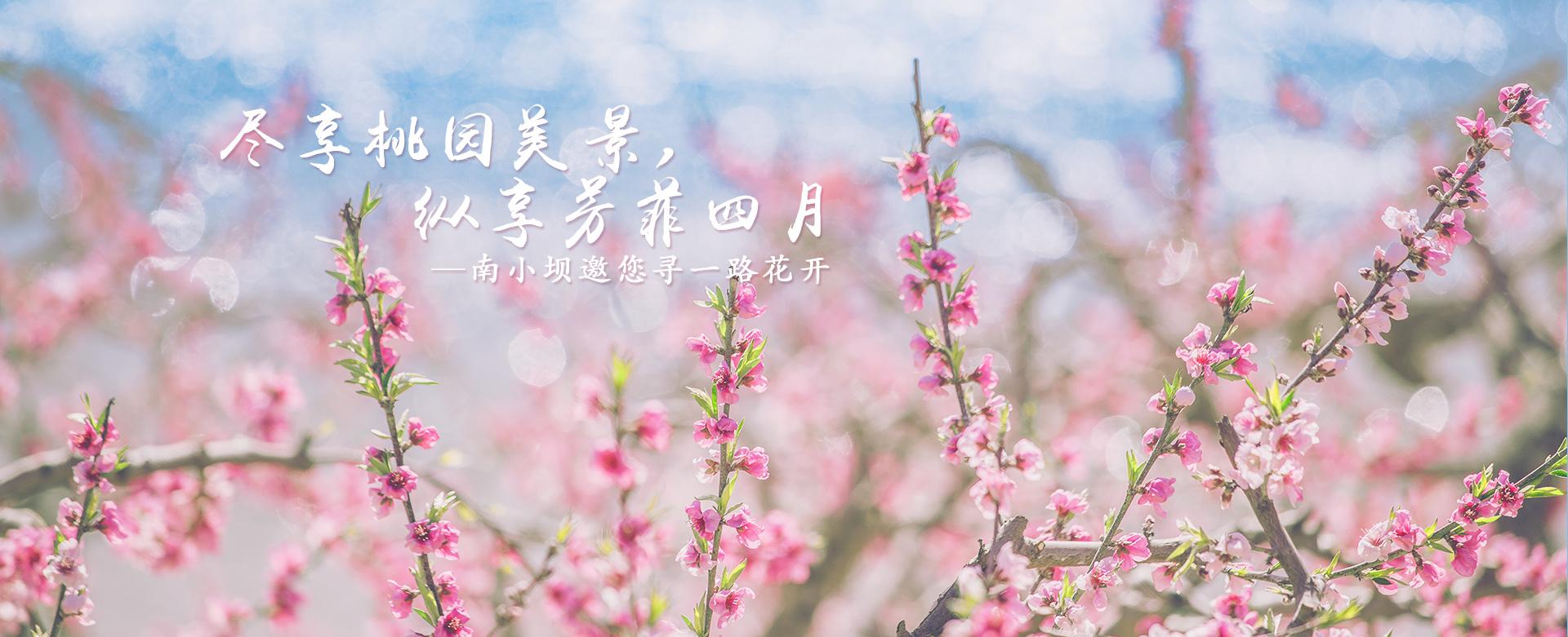 青岛农家乐